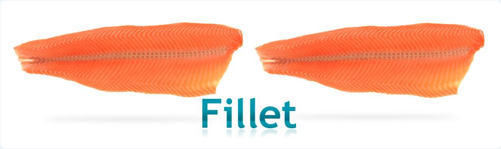 Salmon file