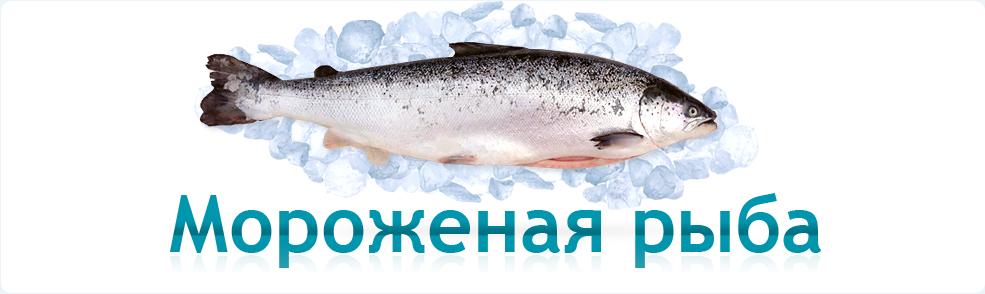 Мороженный лосось